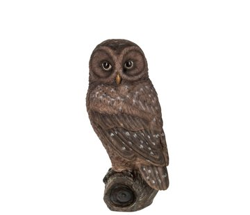 J-Line Decoration Figure Owl On Branch Polyester Brown - Large
