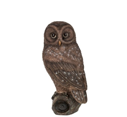 J -Line Decoration Figure Owl On Branch Polyester Brown - Large
