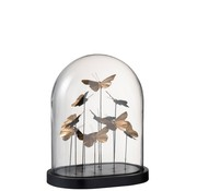 J -Line Decoration Bell Jar Butterflies Glass Black Gold - Large