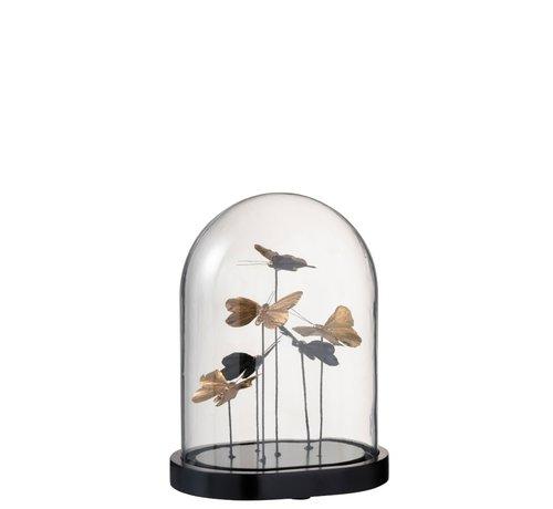 J-Line  Decoration Bell Jar Butterflies Glass Black Gold - Medium