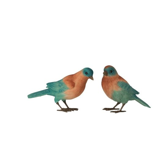 J-Line  Decoratie Beeldjes Vogels Zalm Azuur - Blauw
