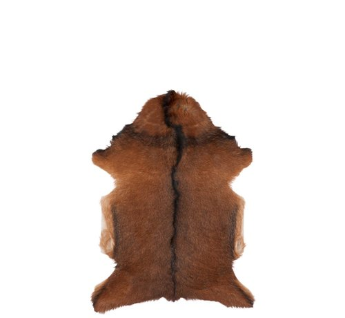 J -Line Animal Fur Goatskin Fur Mix - Brown