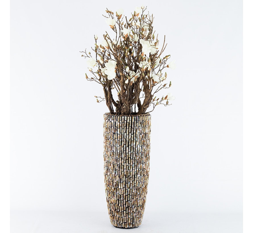 Shell Vase Cylinder Raw Shiny Brown - Large