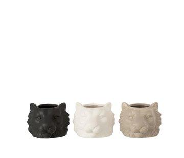 J -Line Flowerpot Three Lions White Beige Black - Small