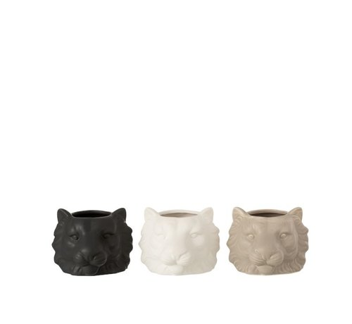 J -Line Bloempot Drie Leeuwen Wit Beige Zwart - Small