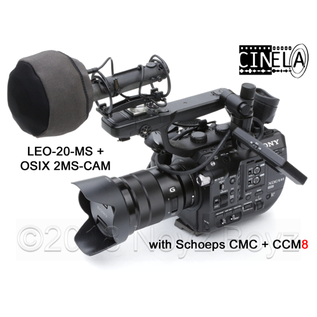Cinela Cinela Leo 20 MSN