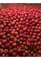 Gevorkian Winery 365 Granaatappel wijn Reservé 2015