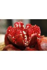 Gevorkian Winery 365 Pomegranate wine semi sweet