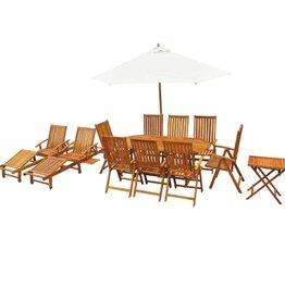 vidaXL Tuin- en loungeset massief acaciahout 13-delig
