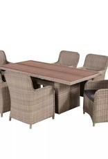 vidaXL Tuinset poly rattan acaciahouten tafelblad 13-delig