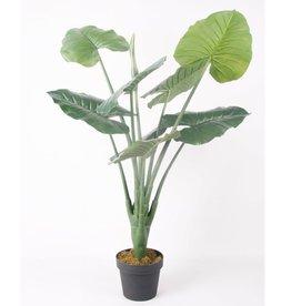 Emerald Kunstplant alocasia groen 90 cm 417583
