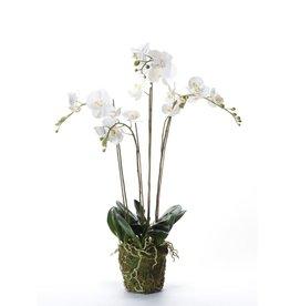 Emerald Kunstplant orchidee met mos wit 90 cm 20.355