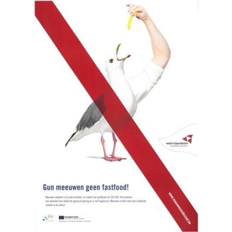 Affiche tegen meeuwenoverlast-1