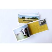 thumb-De Oudlandpolder: een bijzonder boerenverhaal-2