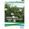 Wilde Rozen in het Zwin en de kustduinen