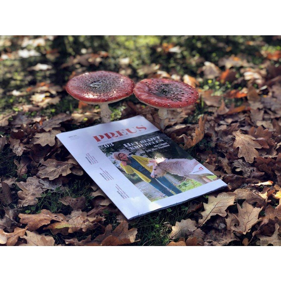 Preus #3 Herfst 2019-2