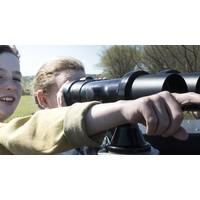 Vogelzoekkaart Zwin zomer