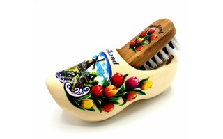 Shoe brush clog