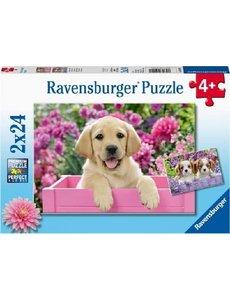 Ravensburger Harige vriendjes - 2 x 24 stukjes