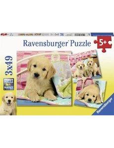 Ravensburger Schattige hondjes - 3 x 49 stukjes