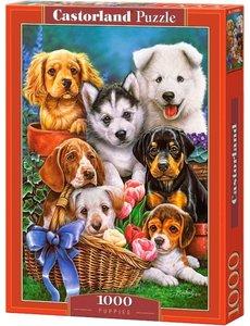 Puppies 1000 stukjes