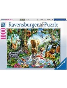 Ravensburger Avonturen in de jungle