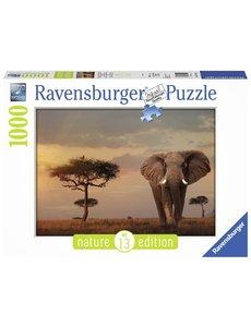 Ravensburger Nature edition 13, Olifant in het Masai Mara Nationaal park
