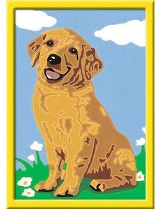 Ravensburger Schilderen op nummer - Lieve puppy