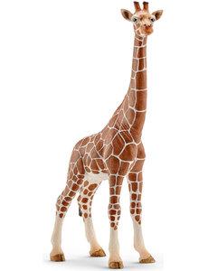 Schleich 14750 - Giraffe, vrouwtje