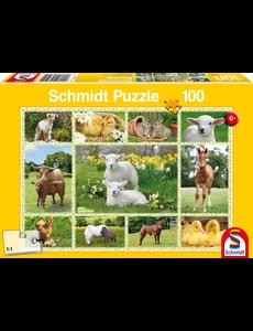 Schmidt Jonge Boerderijdieren - 100 st.