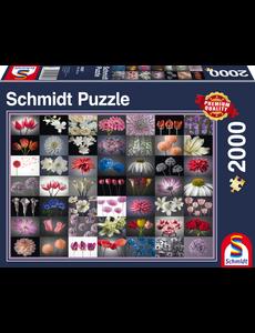Schmidt Bloemengroet, 2000 stukjes