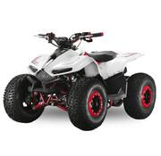 Velocifero Velocifero Mini ATV | E-start | 110cc