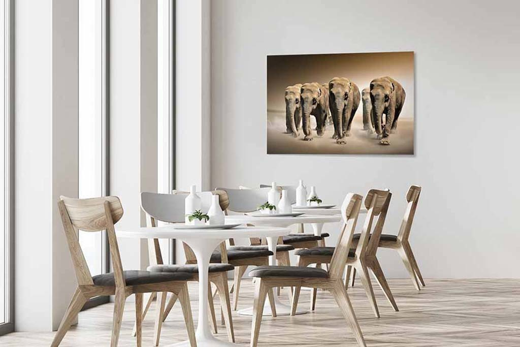 The elephant group-4