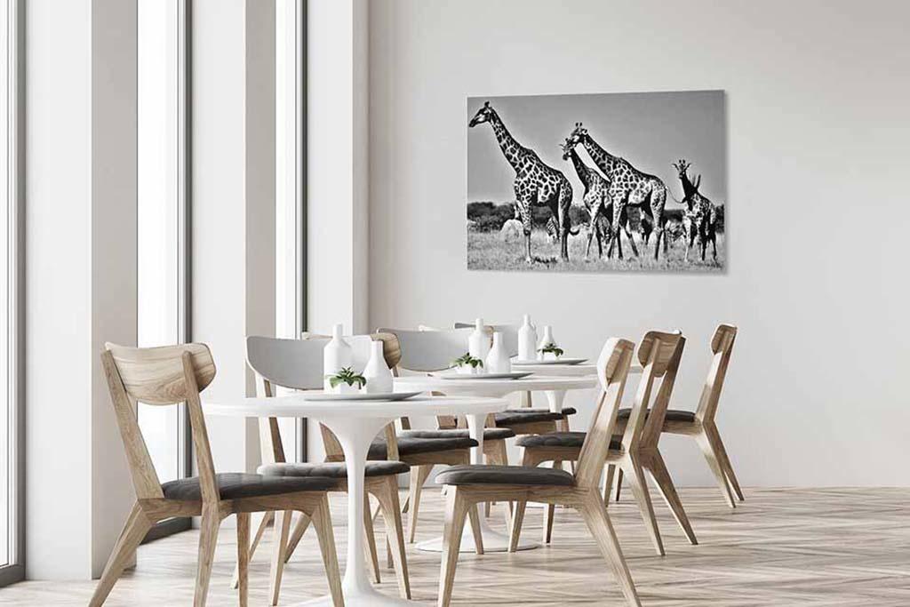 Giraffes Botswana-4