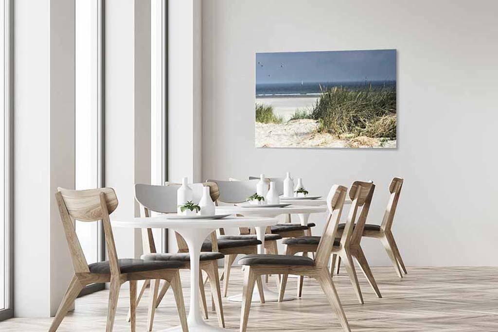 Les dunes néerlandaises-4