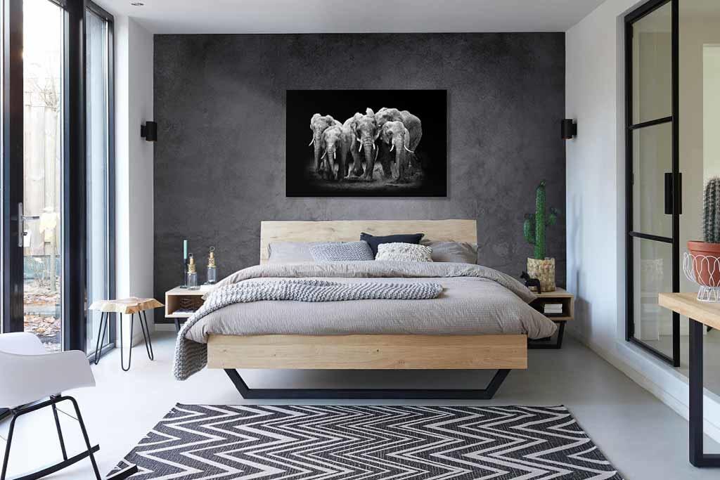 The Elephants Group-3