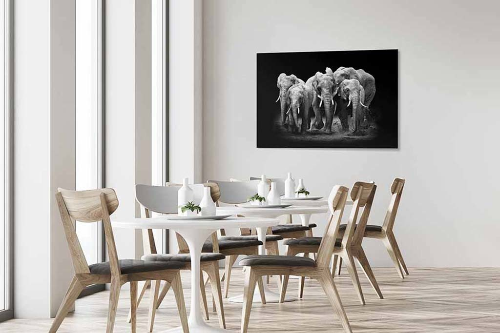 The Elephants Group-4