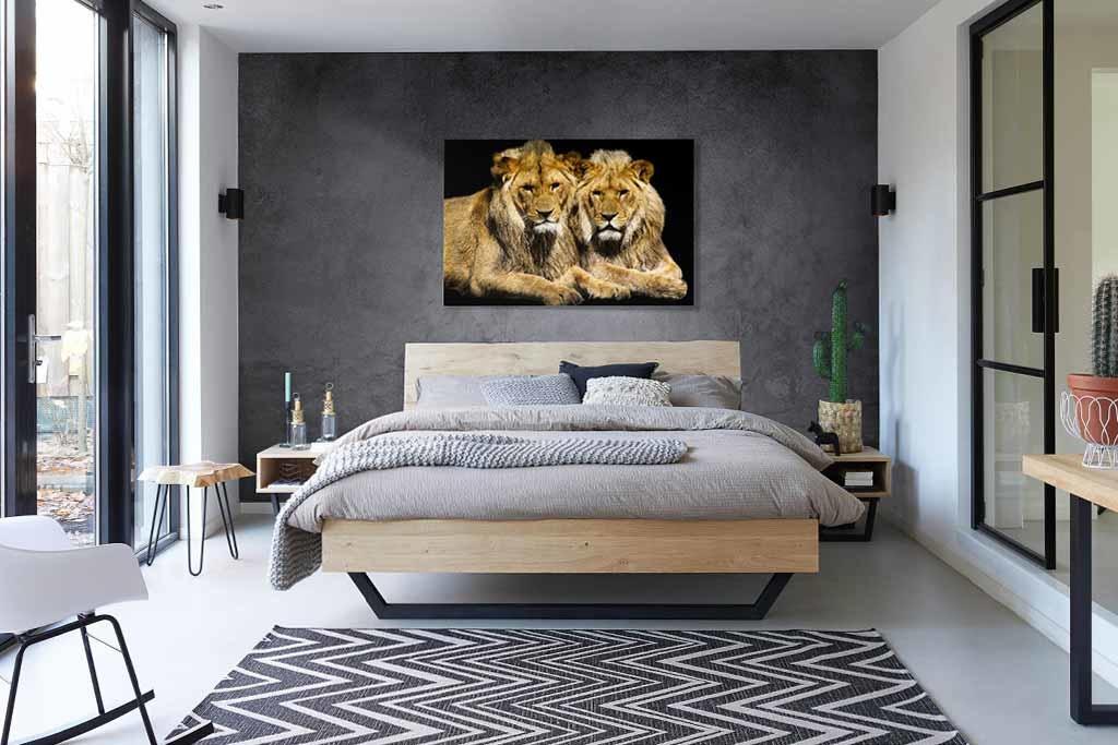 Lions-3