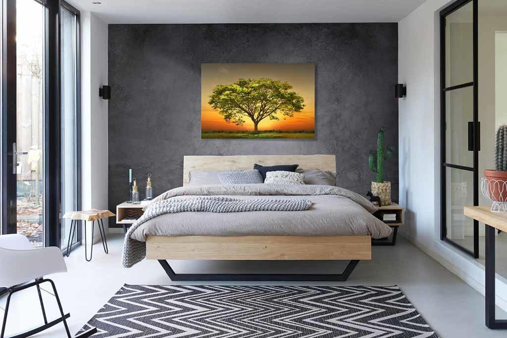 Sunset tree-3