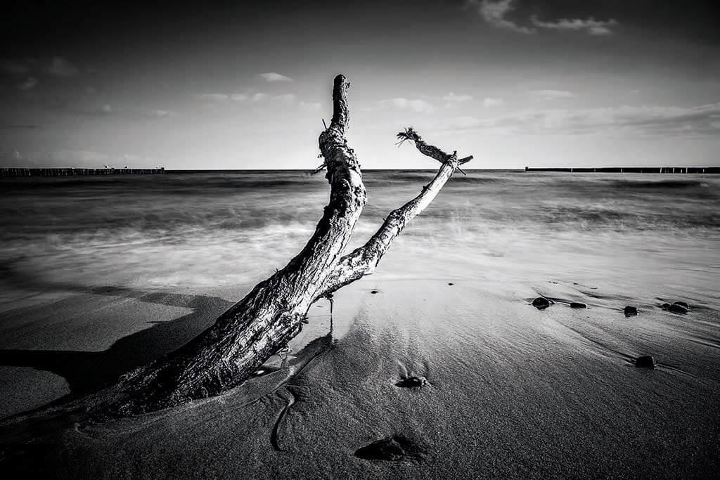 Shore of the baltic sea-1