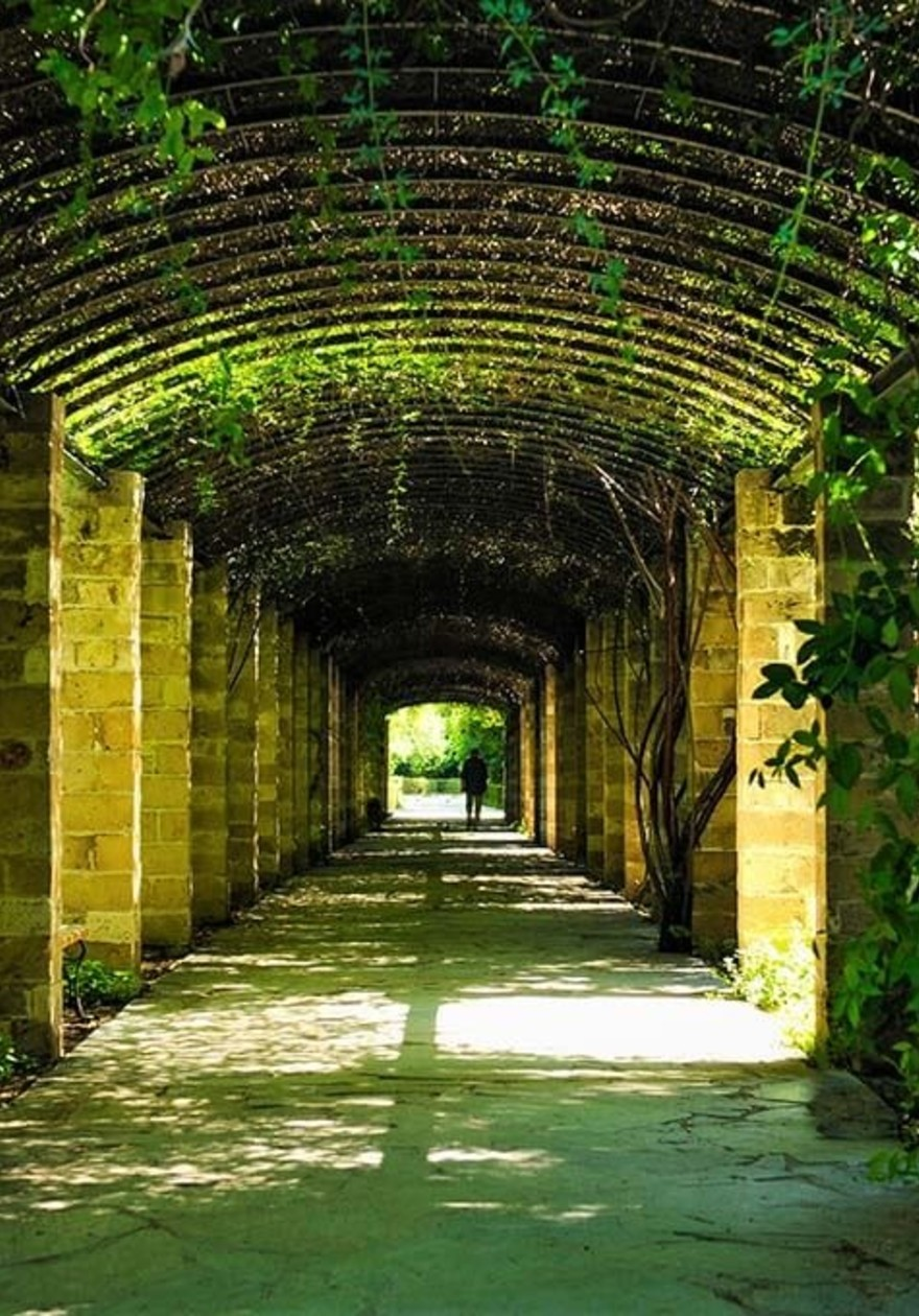 Tunnel of Nature