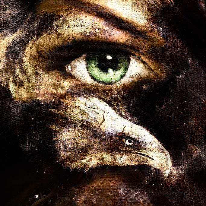 Eagle eye-1