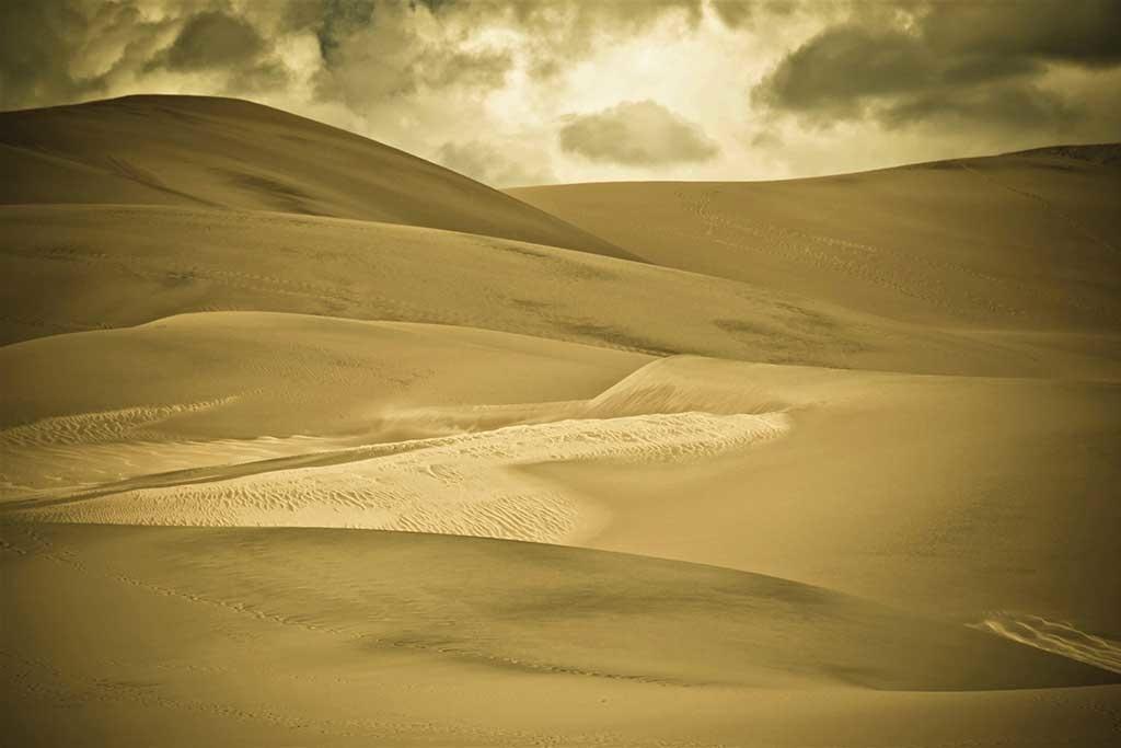 Dunes de sable-1