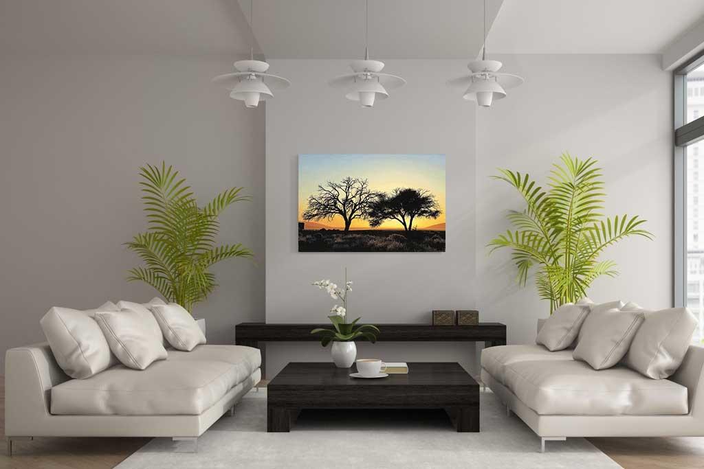Desert trees-4