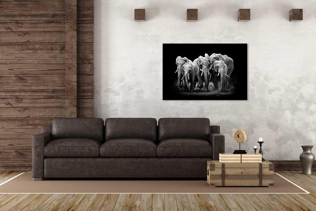 The Elephants Group-2