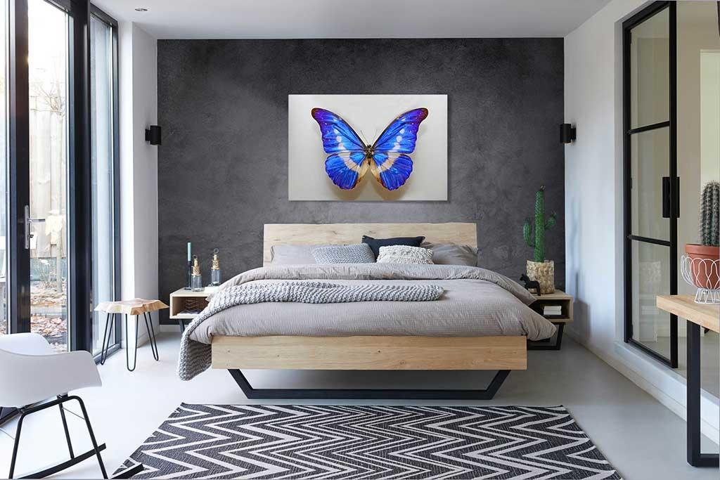 Butterfly blue-3