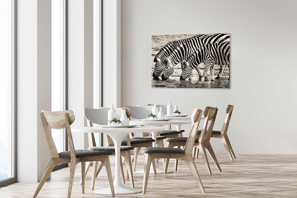 Steppe zebras-4