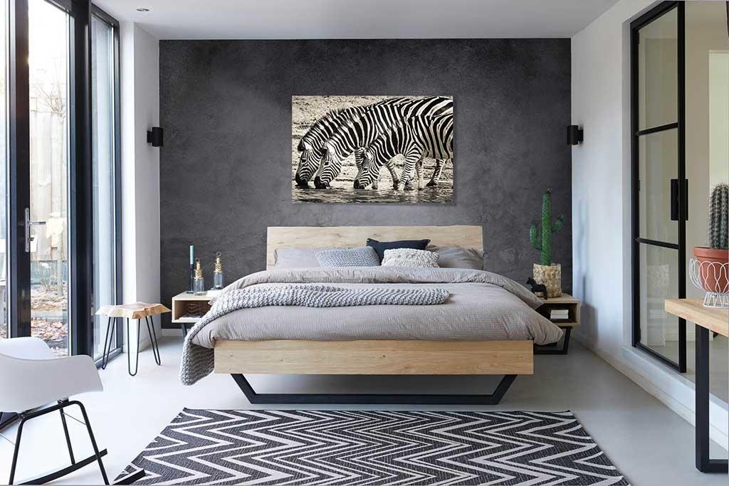 Steppe zebras-3