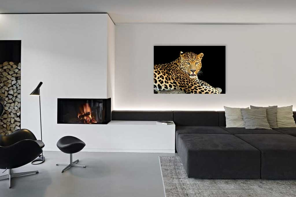 Leopardo-3