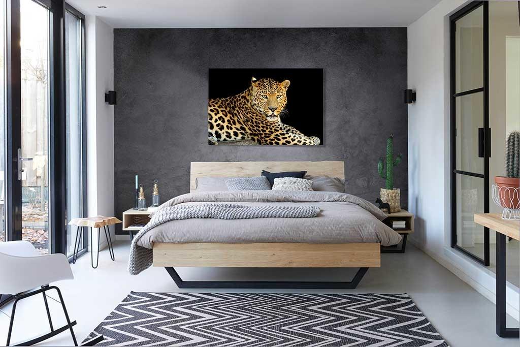 Leopardo-4